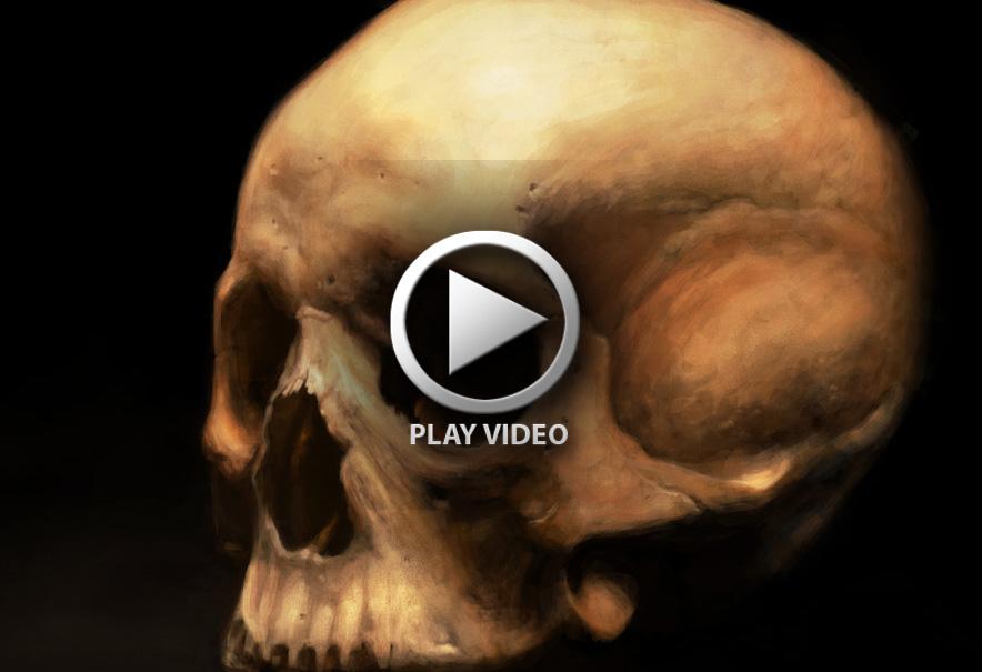 skull_study_by_artofpister-d53dnox