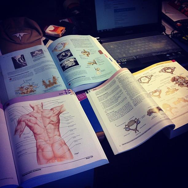 How To Study Anatomy In Medical School Doktorz